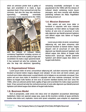 0000101263 Word Template - Page 4