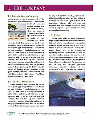 0000101264 Word Template - Page 3