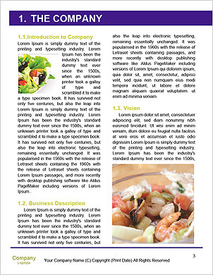 0000101268 Word Template - Page 3