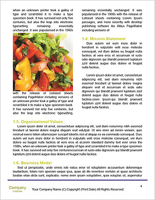 0000101268 Word Template - Page 4