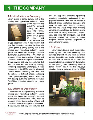 0000101280 Word Template - Page 3