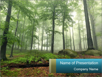 0000101281 PowerPoint Template