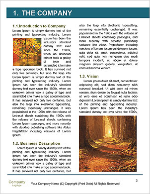 0000101281 Word Template - Page 3