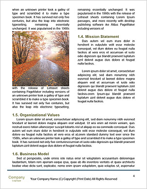0000101281 Word Template - Page 4