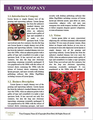0000101283 Word Template - Page 3