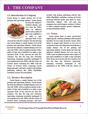 0000101284 Word Template - Page 3