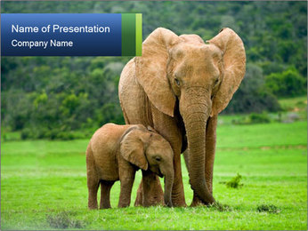 0000101285 PowerPoint Template