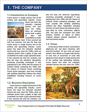 0000101285 Word Template - Page 3