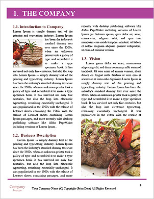 0000101286 Word Template - Page 3