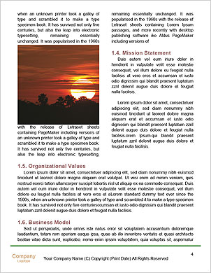 0000101296 Word Template - Page 4