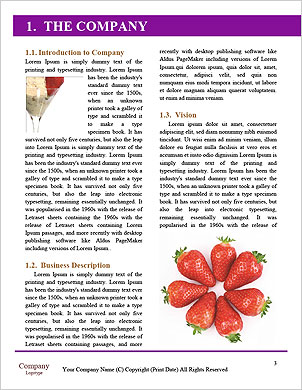 0000101299 Word Template - Page 3