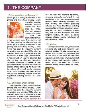0000101302 Word Template - Page 3