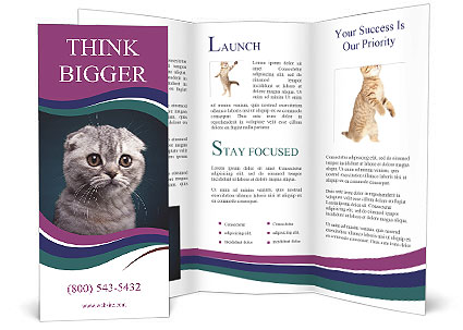 0000101304 Brochure Template