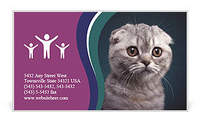 0000101304 Business Card Template