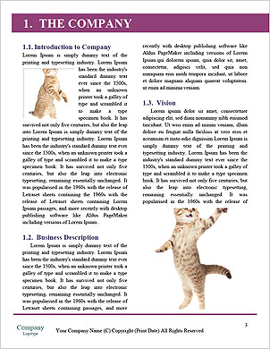 0000101304 Word Template - Page 3