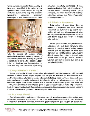 0000101308 Word Template - Page 4