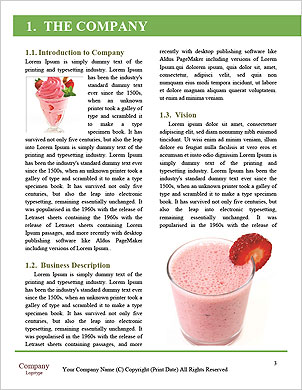 0000101312 Word Template - Page 3
