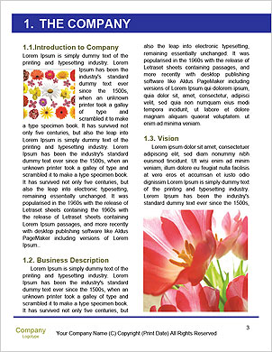 0000101322 Word Template - Page 3