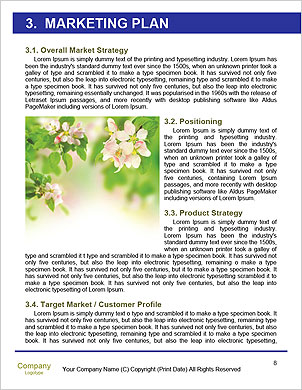 0000101322 Word Template - Page 8