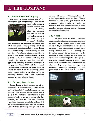0000101327 Word Template - Page 3
