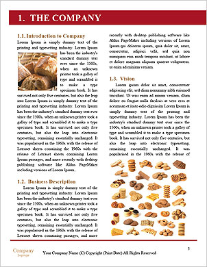 0000101329 Word Template - Page 3