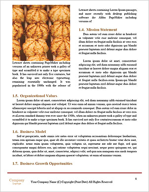 0000101329 Word Template - Page 4