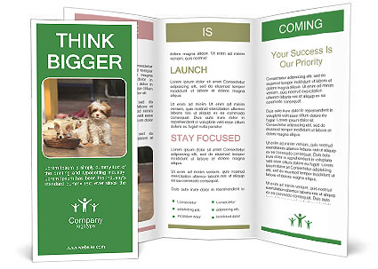 0000101336 Brochure Template