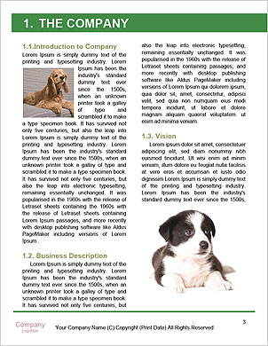 0000101336 Word Template - Page 3