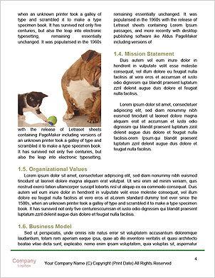 0000101336 Word Template - Page 4