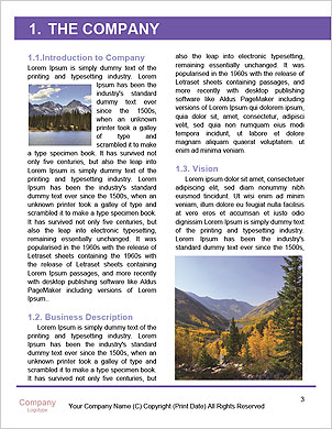 0000101342 Word Template - Page 3