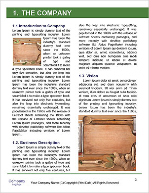 0000101361 Word Template - Page 3