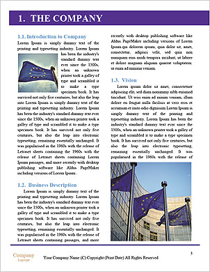 0000101379 Word Template - Page 3