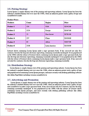 0000101386 Word Template - Page 9