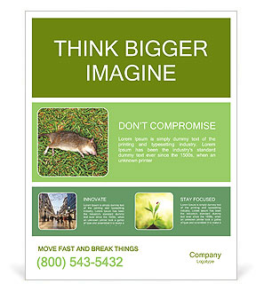 0000101391 Poster Template