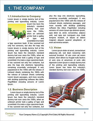 0000101397 Word Template - Page 3