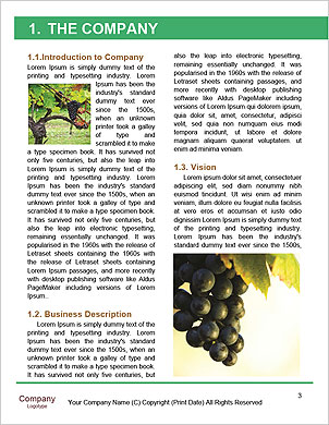 0000101408 Word Template - Page 3