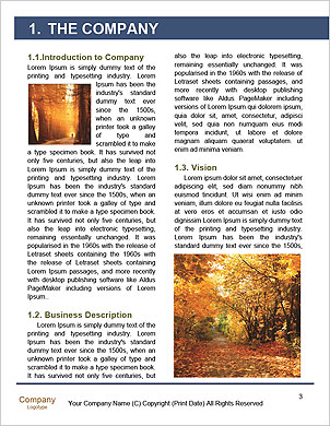 0000101417 Word Template - Page 3