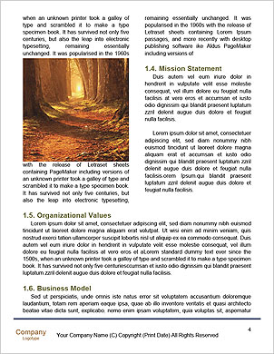 0000101417 Word Template - Page 4