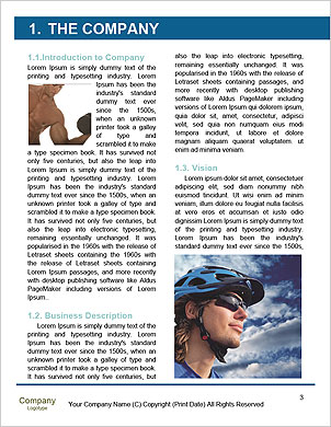 0000101421 Word Template - Page 3