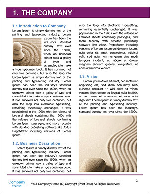 0000101423 Word Template - Page 3