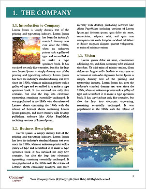 0000101424 Word Template - Page 3