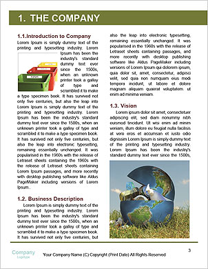 0000101425 Word Template - Page 3
