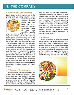 0000101427 Word Template - Page 3