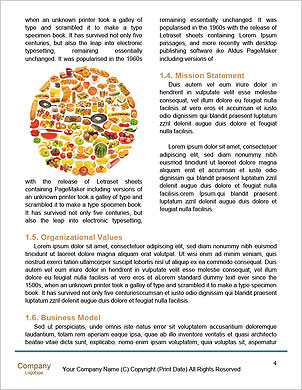 0000101427 Word Template - Page 4