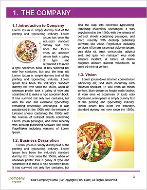 0000101429 Word Template - Page 3
