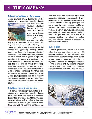 0000101433 Word Template - Page 3