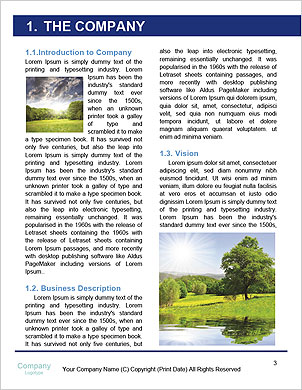 0000101434 Word Template - Page 3