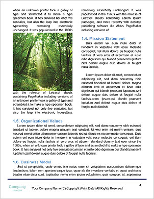 0000101434 Word Template - Page 4