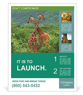 0000101440 Poster Template