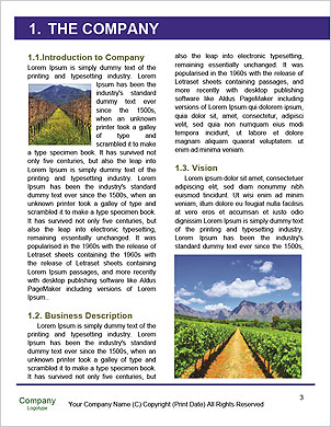 0000101441 Word Template - Page 3